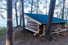在一个湖附近的一个新的防风林在瑞典 免版税库存照片