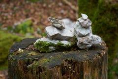 在一个湿木树桩安排的石灰石石标 免版税图库摄影