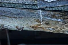 在一个灰色木板的一点冰柱 免版税图库摄影