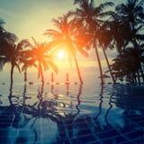在一个热带手段海滩的日落与棕榈树剪影  自然 免版税库存照片