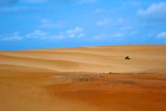 在一个热带沙丘的儿童车 免版税库存图片