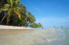 在一个热带沙滩的小波浪 库存照片