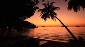 在一个热带海岛的岸的美好的日落 酸值张 股票视频