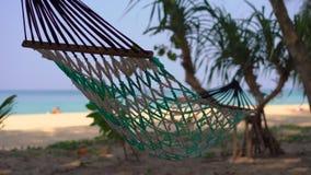 在一个热带海滩的一个吊床 股票视频