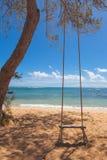 在一个热带海滩的结构树摇摆 免版税库存图片
