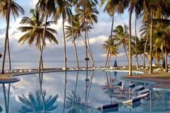 在一个热带海滩胜地的池 库存图片