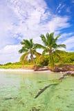在一个热带海滩天堂的夏天在佛罗里达 免版税库存照片