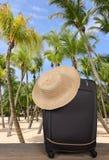 在一个热带海滩的一个旅行手提箱与棕榈树 库存图片