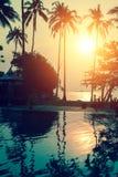 在一个热带海滩的日落,棕榈树的反射在水池的 库存图片