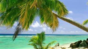 在一个热带海滩的波浪 影视素材