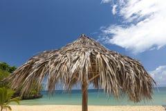 在一个热带海滩的秸杆伞 库存图片
