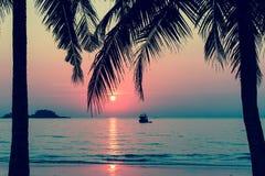 在一个热带海滩的美好的日落,棕榈树剪影 库存图片
