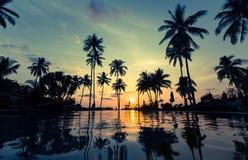在一个热带海滩的美好的日落 免版税库存照片