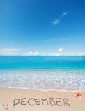 在一个热带海滩的12月在云彩下 免版税图库摄影