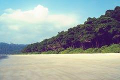 在一个热带白色海滩的长的棕榈树 免版税库存图片