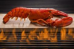 在一个热的火焰状烤肉格栅的新鲜的龙虾 免版税库存照片