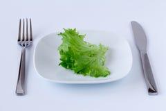 在一个牌照的莴苣有刀子和叉子的 库存照片