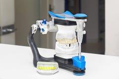 在一个牙齿修复的实验室的技术射击 库存照片