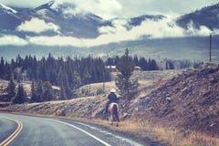 在一个牛仔帽的母马车手在路,美国 免版税库存图片