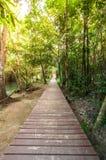 在一个狂放的公园的木走道瀑布的Huay Mae Kamin, 免版税库存照片