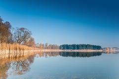 在一个狂放的池塘的晴朗的早晨 免版税库存照片