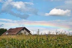 在一个玉米田和房子的低彩虹在特兰西瓦尼亚,罗马尼亚 库存照片