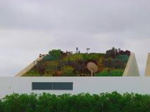 在一个现代房子的倾斜的屋顶种植的庭院 库存照片