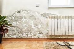 在一个现代房子的墙壁上的模子和湿气积累 库存照片