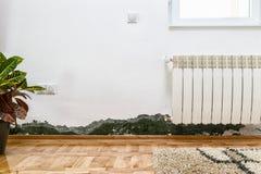 在一个现代房子的墙壁上的模子和湿气积累 库存图片