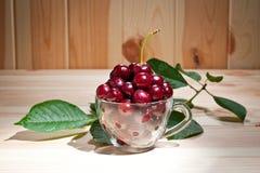 在一个玻璃杯子的成熟水多的樱桃木表面上 图库摄影