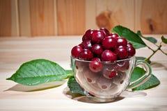 在一个玻璃杯子的成熟水多的樱桃木表面上 免版税库存图片