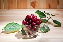 在一个玻璃杯子的成熟水多的樱桃木表面上 免版税图库摄影