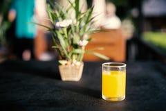 在一个玻璃杯子的橙汁在桌上 库存图片