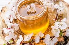 在一个玻璃瓶子的新鲜的花卉甜蜂蜜用花开花的杏子 免版税库存图片