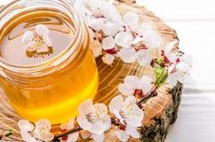 在一个玻璃瓶子的新鲜的花卉甜蜂蜜用花开花的杏子 免版税图库摄影