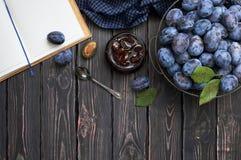 在一个玻璃瓶子的自创李子果酱和在一个碗的新鲜的蓝色李子在与拷贝的黑暗的土气木背景间隔顶视图 免版税库存照片