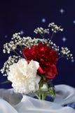 在一个玻璃花瓶的白色和红色花 免版税库存图片