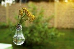 在一个玻璃花瓶的野花 免版税库存图片