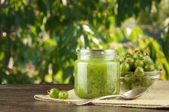 在一个瓶子的鹅莓圆滑的人在绿色叶子棕色桌和背景上  库存照片