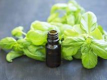 在一个瓶的蓬蒿精油有蓬蒿草本叶子的 免版税库存照片