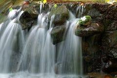 在一个生苔岩石和花的下落的特写镜头一条可爱的小河由落下的水弄脏了背景影响 免版税图库摄影