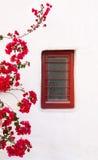 在一个白色大厦的红色箱子与美丽的九重葛开花 库存照片
