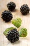 在一个白色木板的黑莓 库存图片
