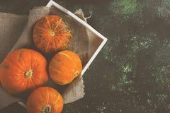 在一个白色木盘子的成熟南瓜在绿色背景 顶层 免版税图库摄影