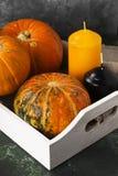 在一个白色木盘子的成熟南瓜,橙色和黑蜡烛 免版税库存照片