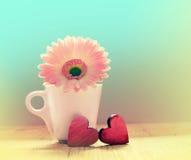 在一个白色杯子的大丁草花有红色华伦泰的 免版税库存图片