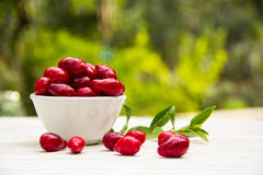 在一个白色碗的新鲜的水多的莓果山茱萸 季节性莓果 免版税库存图片