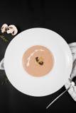在一个白色碗的蘑菇奶油色汤有在黑背景,顶视图的调味料的 免版税库存图片