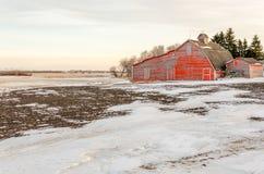 在一个白色积雪的领域流洒的红色 库存照片