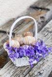 在一个白色篮子的小米黄复活节彩蛋与紫罗兰 免版税库存照片